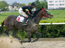 Horse racing in Nalchik. Stock Photography