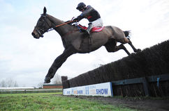 Horse Racing. One for arthur1st seen here jumping the last at warwick races 14-1-17 Royalty Free Stock Images