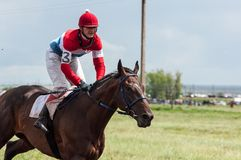 Horse racing. Stock Image