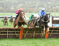 Horse Racing. Penhill 1st blue and monalee 2nd seen here jumping the last at Cheltenham races 17-3-17 Stock Photos