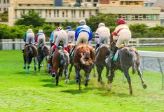 Horse racing in Port-Louis, Mauritius - back view royalty free stock photo