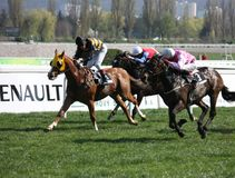 Horse racing in Prague, Chuchle. 52th big april race in horse racing - race Easter Prize. In front is horse called Vademecum with jockey Tomas Lukasek (finally Royalty Free Stock Photography