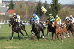 Horse racing in Prague Chuchle - derby race Royalty Free Stock Photography