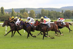 Horse racing in Prague Royalty Free Stock Images