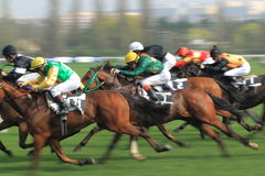 Horse racing in Prague. The 3rd race in the 88th Gomba handicap held on Prague om 7.4.2014 Stock Photography