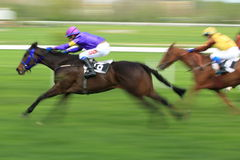 Horse racing in Prague - Unangepasse Royalty Free Stock Photography