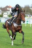 Horse racing in Prague - Waringham Stock Images