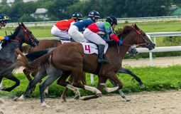 Horse racing for the prize of Aeolian Harp in Pyatigorsk. Stock Images