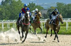 Horse racing for the prize of Comparison. stock photos