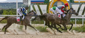 Horse racing for the prize of the OAKS in Pyatigorsk. PYATIGORSK, RUSSIA - JULY 08, 2018:Horse racing for the prize of the Oaks in Pyatigorsk,one of the largest Stock Photo
