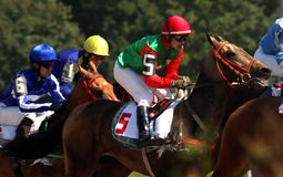 Horse racing for the prize of the Osenni. stock images