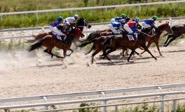 Horse racing in Pyatigorsk city Stock Image