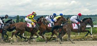 Horse racing in Pyatigorsk Royalty Free Stock Images