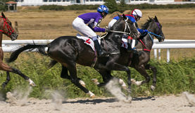 Horse racing in Pyatigorsk Royalty Free Stock Photo