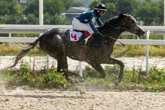 Horse racing in Pyatigorsk Stock Photos