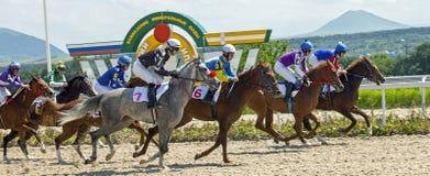Horse racing in Pyatigorsk Stock Photography
