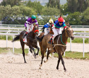 Horse racing. Stock Images