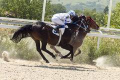 Horse racing. Royalty Free Stock Images