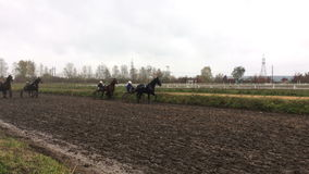 Horse racing at the racetrack. stock footage
