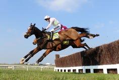Horse Racing Royalty Free Stock Photo