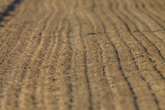 Horse Racing Sand Track  Stock Photography