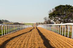 Horse Racing Sand Tracks Royalty Free Stock Images