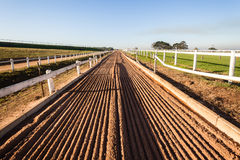 Horse Racing Sand Tracks Stock Photography