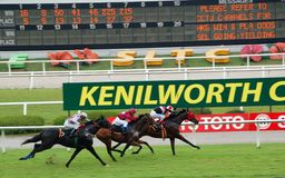Horse Racing - Selangor Turf Club Stock Photos