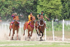 Horse racing in sumba Royalty Free Stock Photo