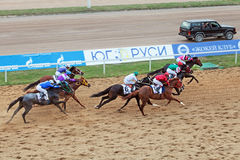 Horse racing, top view Royalty Free Stock Images