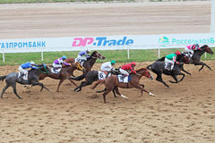Horse racing, top view Stock Photography