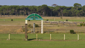 Horse Racing Track San Rossore in Tuscany. Stock Photos