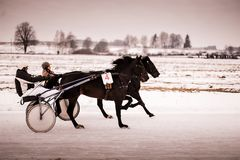 Horse racing in the winter on ice royalty free stock photography
