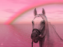 Horse in the rainbow Royalty Free Stock Photo