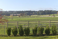 Horse ranch and country living rural Oregon. Stock Photo