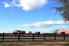 Horse ranch in virginia Royalty Free Stock Photo