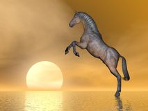 Horse rearing upon the sun - 3D render. Beautiful brown horse rearing on the ocean next to the sun Royalty Free Stock Photography