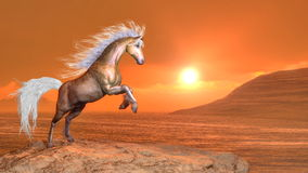 Horse rearing by sunset - 3D render. Clear brown horse rearing by orange sunset - 3D render Stock Photos