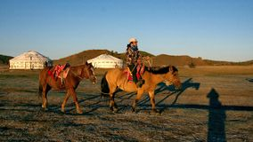 The horse rent. In Inner Mongolia, tourist area.The horse rent Stock Photo