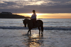 Horse and ride Royalty Free Stock Photo