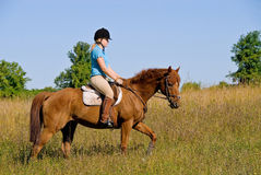 Horse Ride Royalty Free Stock Photography