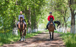 Horse ride. Royalty Free Stock Images