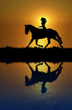 Horse Ride Reflection stock image