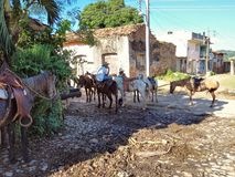 Horse ride in Vinales royalty free stock photos