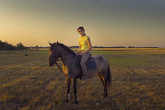 Horse rider. At sunset Stock Images