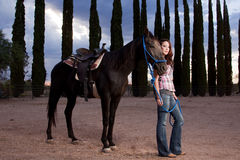 The horse and rider Stock Photo