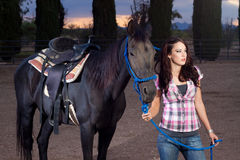 The horse and rider Royalty Free Stock Image