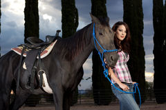 The horse and rider Stock Images