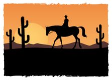Horse rider. At the sunset Stock Images