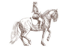 Horse rider. Horse and rider - hand drawing, this is original sketch Stock Image